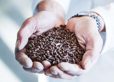 Feeding Fish Farms: The Problem With Fishmeal