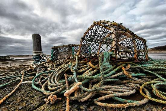 Why lobsters caught in Canada probably won't be...